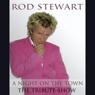 Rod Stewart Tribute Act: Dave Springfield