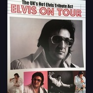 Elvis Impersonator: Elvis On Tour