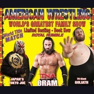 Wrestling: The American Wrestling Show