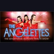 Motown Tribute Act: Angelettes